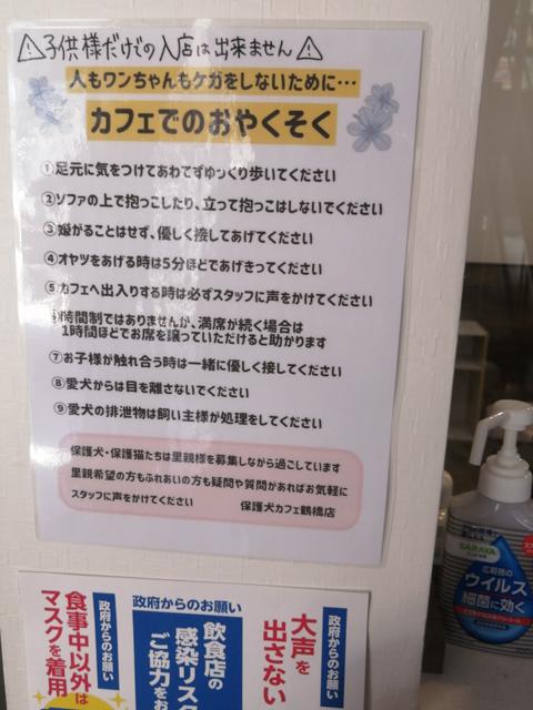 保護犬カフェ 大阪 本部 鶴橋 料金 里親 条件