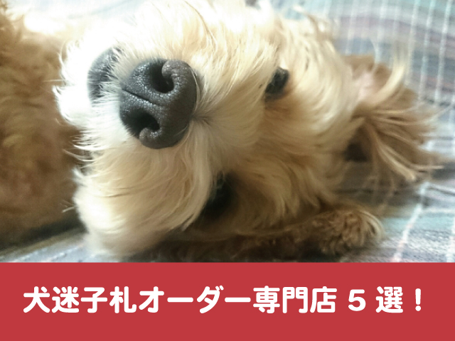 犬 迷子札 オーダー 専門店 真鍮 シルバー ハンドメイド