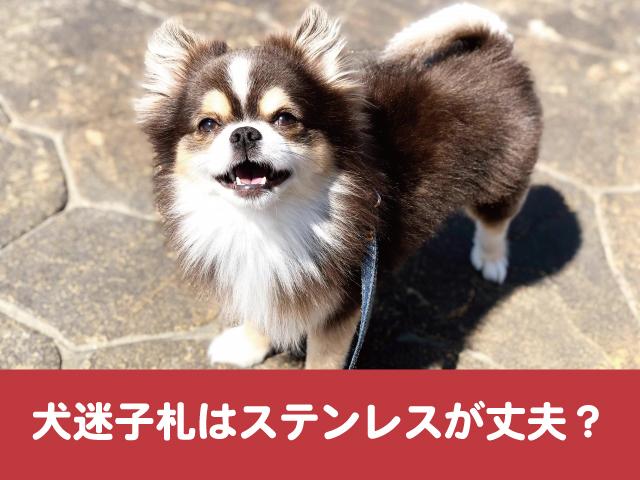 犬 迷子札 ステンレス 丈夫 噛む 嫌がる 選び方