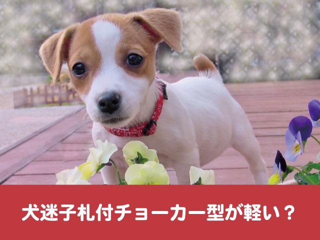 犬 迷子札 チョーカー 軽い メリット デメリット