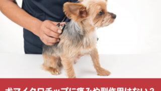 犬マイクロチップ 痛み 副作用 健康 負担 癌 アレルギー 危険性